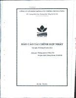 Báo cáo tài chính hợp nhất quý 2 năm 2012 - Công ty cổ phần Giống cây trồng Trung ương