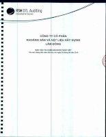 Báo cáo tài chính công ty mẹ quý 2 năm 2014 (đã soát xét) - Công ty Cổ phần Khoáng sản và Vật liệu xây dựng Lâm Đồng
