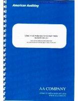 Báo cáo tài chính năm 2011 (đã kiểm toán) - Công ty Cổ phần Đầu tư và Phát triển Đa Quốc Gia I.D.I