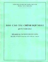 Báo cáo tài chính hợp nhất quý 1 năm 2012 - Công ty Cổ phần Tập đoàn Hoàng Long