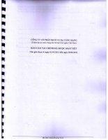 Báo cáo tài chính quý 2 năm 2011 (đã soát xét) - Công ty Cổ phần Dịch vụ Hạ tầng mạng