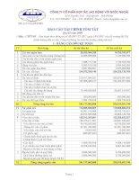 Báo cáo tài chính quý 2 năm 2009 - Công ty Cổ phần Hợp tác Lao động với Nước ngoài