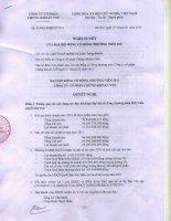 Nghị quyết Đại hội cổ đông thường niên năm 2011 - Công ty cổ phần Chứng khoán Đầu tư Việt Nam