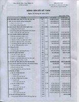Báo cáo tài chính quý 2 năm 2015 - CTCP Dược phẩm 2-9 TP. Hồ Chí Minh