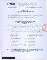 Nghị quyết đại hội cổ đông ngày 28-04-2009 - Công ty Cổ phần Đầu tư Năm Bảy Bảy