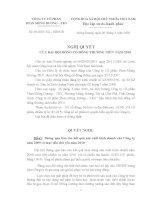 Nghị quyết Đại hội cổ đông thường niên năm 2010 - Công ty cổ phần Than Mông Dương - Vinacomin