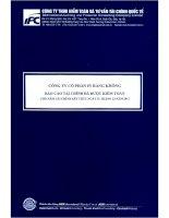 Báo cáo tài chính năm 2011 (đã kiểm toán) - Công ty Cổ phần In Hàng không