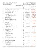 Báo cáo tài chính quý 2 năm 2013 - Công ty Cổ phần Chứng khoán MÊ KÔNG