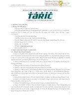 Báo cáo thường niên năm 2012 - Công ty Cổ phần Tasco