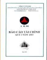 Báo cáo tài chính công ty mẹ quý 1 năm 2013 - Công ty Cổ phần Khoáng sản và Vật liệu xây dựng Lâm Đồng