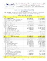 Báo cáo tài chính quý 1 năm 2008 - Công ty Cổ phần Hợp tác Lao động với Nước ngoài