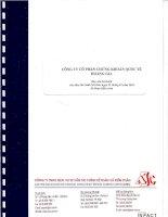 Báo cáo tài chính năm 2010 (đã kiểm toán) - Công ty Cổ phần Chứng khoán Quốc tế Hoàng Gia