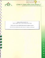 Báo cáo tài chính năm 2013 (đã kiểm toán) - Tổng Công ty Đầu tư Phát triển Nhà và Đô thị Nam Hà Nội