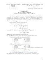 Nghị quyết đại hội cổ đông ngày 25-04-2009 - Công ty Cổ phần Thủy điện Nậm Mu
