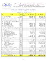 Báo cáo tài chính quý 3 năm 2010 - Công ty Cổ phần Hợp tác Lao động với Nước ngoài