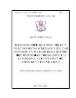 ĐÁNH GIÁ HIỆU QUẢ điều TRỊ của PHÁC đồ METHOTREXATE LIỀU CAO đơn độc và METHOTREXATE PHỐI hợp RITUXIMAB TRONG điều TRỊ LYMPHOMA NGUYÊN PHÁT hệ THẦN KINH TRUNG ương