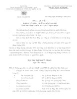 Nghị quyết đại hội cổ đông ngày 30-03-2010 - Công ty cổ phần Đầu tư và Xây dựng HUD3