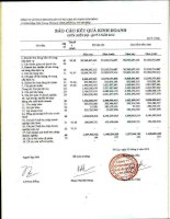 Báo cáo KQKD công ty mẹ quý 1 năm 2012 - Công ty Cổ phần Khoáng sản và Vật liệu xây dựng Lâm Đồng