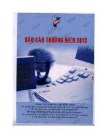 Báo cáo thường niên năm 2013 - Công ty cổ phần In và Bao bì Mỹ Châu