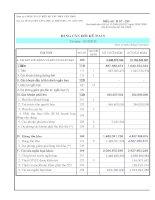 Báo cáo tài chính năm 2010 (đã kiểm toán) - Công ty Cổ phần Bến xe Tàu phà Cần Thơ