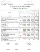Báo cáo tài chính công ty mẹ quý 2 năm 2013 - Công ty Cổ phần Phát triển Hạ tầng Vĩnh Phúc