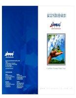 Báo cáo thường niên năm 2010 - Tổng Công ty Phát triển Đô thị Kinh Bắc-CTCP