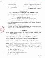 Nghị quyết Đại hội cổ đông thường niên - Công ty Cổ phần Chứng khoán Kim Long