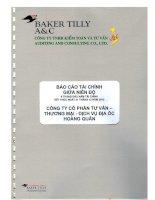 Báo cáo tài chính quý 2 năm 2012 (đã soát xét) - Công ty cổ phần Tư vấn-Thương mại-Dịch vụ Địa ốc Hoàng Quân