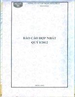 Báo cáo tài chính hợp nhất quý 1 năm 2012 - Công ty cổ phần Tập đoàn Hòa Phát