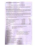 Báo cáo tài chính năm 2010 (đã kiểm toán) - Công ty cổ phần Du lịch - Dịch vụ Hội An