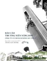 Báo cáo thường niên năm 2009 - Công ty Cổ phần Xi Măng Hà Tiên 1