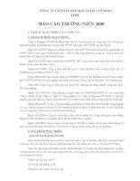 Báo cáo thường niên năm 2008 - Công ty Cổ phần Kim khí Thành phố Hồ Chí Minh