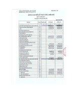 Báo cáo tài chính quý 1 năm 2011 - Công ty Cổ phần Dược Thú y Cai Lậy