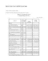 Báo cáo tài chính năm 2009 (đã kiểm toán) - Công ty Cổ phần Xây dựng Huy Thắng