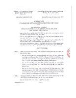 Nghị quyết Đại hội cổ đông thường niên năm 2010 - Công ty Cổ phần Kỹ nghệ Khoáng sản Quảng Nam