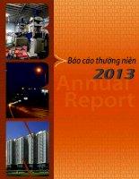 Báo cáo thường niên năm 2013 - Công ty Cổ phần Đầu tư Năm Bảy Bảy