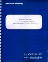 Báo cáo tài chính năm 2012 (đã kiểm toán) - Công ty Cổ phần Mirae