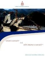 Báo cáo thường niên năm 2012 - Công ty cổ phần LICOGI 16