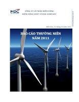 Báo cáo thường niên năm 2010 - Công ty Cổ phần miền Đông
