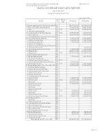 Báo cáo tài chính quý 2 năm 2011 - Công ty Cổ phần Sản xuất và Kinh doanh Kim khí