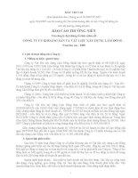 Báo cáo thường niên năm 2008 - Công ty Cổ phần Khoáng sản và Vật liệu xây dựng Lâm Đồng