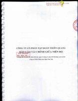 Báo cáo tài chính quý 2 năm 2015 (đã soát xét) - Công ty cổ phần Tập đoàn Thiên Quang