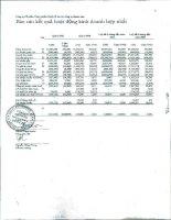 Báo cáo KQKD hợp nhất quý 2 năm 2011 - Công ty Cổ phần Thực phẩm Quốc tế