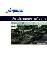 Báo cáo thường niên năm 2013 - Tổng Công ty Phát triển Đô thị Kinh Bắc-CTCP