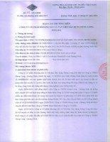 Báo cáo thường niên năm 2013 - Công ty cổ phần Khoáng sản và Vật liệu Xây dựng Hưng Long