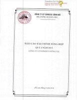 Báo cáo tài chính công ty mẹ quý 2 năm 2013 - Công ty Cổ phần Someco Sông Đà