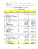 Báo cáo tài chính quý 1 năm 2011 - Công ty Cổ phần Hợp tác Lao động với Nước ngoài