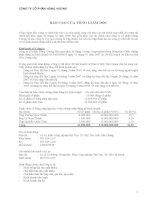 Báo cáo tài chính hợp nhất năm 2008 (đã kiểm toán) - Công ty Cổ phần Hùng Vương