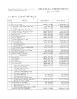 Báo cáo tài chính quý 4 năm 2009 - Công ty Cổ phần Sản xuất và Kinh doanh Kim khí