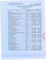 Báo cáo tài chính quý 4 năm 2012 - Công ty cổ phần Chứng khoán Liên Việt